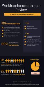 workfromhomedata.com infographic