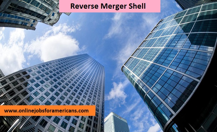 What is a reverse merger shell